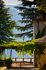 """Shady Trees by the Lake • <a style=""""font-size:0.8em;"""" href=""""http://www.flickr.com/photos/55747300@N00/6173582948/"""" target=""""_blank"""">View on Flickr</a>"""