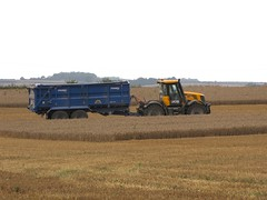 Harvesting Wheat 3 (tdcphotos) Tags: tractor field farm wheat harvest fields vehicle trailer agriculture farmmachinery combineharvester