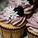DC Cupcake 2011