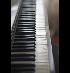 El piano (Leonorgb) Tags: blanco canon leo negro piano desenfoque música teclas thepiano instrumentodecuerda desenfoqueselectivo