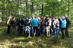 Mushroom Tour in Sorø (Sergey Kovalyov) Tags: mushroom tour sorø svampetur