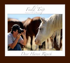 Robert Howell __  Camera Club of Bozeman at Deer Haven Ranch (Robert Howell _) Tags: horses montana fieldtrip roberthowell cameraclubofbozeman deerhavenranch roberthowellphotography