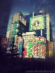 Japan 6 (Latitia Pirrello-Parnot - artiste peintre) Tags: city light building japan tokyo photo tour lumire kawaii japon ville urbain advertissement bigjaponjapantokyophotokawaiivillecitybuildingtoururbainadvertissementlumirelight