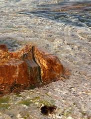 Gneiss Glacial Erratic in Long Island Sound (sandy richard) Tags: usa newyork unitedstates geology wildwood calverton wildwoodstatepark newyorkstateparks sandyrichard longislandgeology sandrarichard
