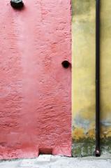 Tubismo a colori (squarzenegger) Tags: liguria montemarcello veterinarifotografi squarzenegger