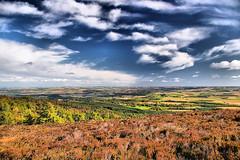 Bennachie Looking East (Gordon M Robertson) Tags: uk sky clouds scotland aberdeenshire heather fields bracken bennachie