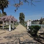"Parque San Martín <a style=""margin-left:10px; font-size:0.8em;"" href=""http://www.flickr.com/photos/14315427@N00/6189517577/"" target=""_blank"">@flickr</a>"