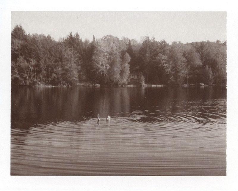 Polaroid Land Camera 250