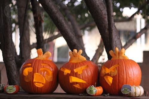 Angry Birds Pumpkin Jack-o-Lanterns for Halloween by Brenda Ponnay for Alphamom.com