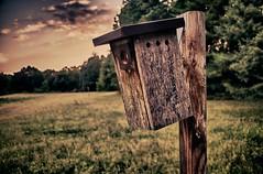 Howe's Birdhouse (MatthewOsbornePhotography) Tags: sunset sc bokeh birdhouse 365 hdr spartanburg 2011 d7000