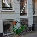 Green bicycle, Pisserenden