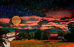 West Side Farmhouse (Rusty Russ) Tags: new wild arizona sky horses moon france west animals photoshop google flickr mask conway farm north hampshire east full montage newsroom improved facebook manipulate stumbleupon ayhoo