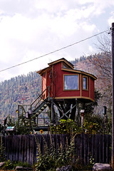 Elaborate Treehouse in Milltown, Montana (CT Young) Tags: montana treehouse missoula gardencity milltown missoulamt missoulamontana canonef70200mmf4lusm