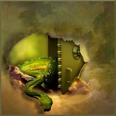 The serpent's egg (jaci XIII) Tags: cobra reptile snake surrealism egg rptil safe serpent cofre ovo surrealismo serpente