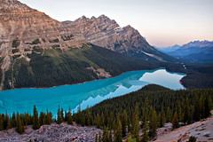 Peyto Lake At Dawn (Jeremy Duguid) Tags: park blue trees lake canada mountains nature canon landscape rockies turquoise jeremy canadian glacier national alberta banff 1000 glacial peyto duguid 50d jeremyduguid