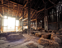 Into the sun. (_.Chris._) Tags: wood abandoned barn hay intothesun