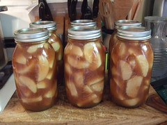 Apple Pie filling canned