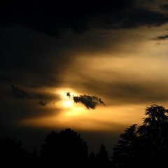 dark sky (overthemoon) Tags: trees sunset sun black yellow clouds dark square schweiz switzerland suisse cloudy svizzera vevey vaud romandie imagepoetry imageposie
