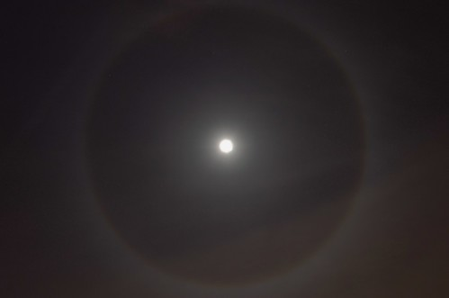 Moon #4 - The Moon Ring