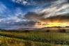 Let there be light (vk1962) Tags: light sun canada grass fog vancouver clouds sunrise nikon bc ngc 11 richmond tokina 16 vapor d700