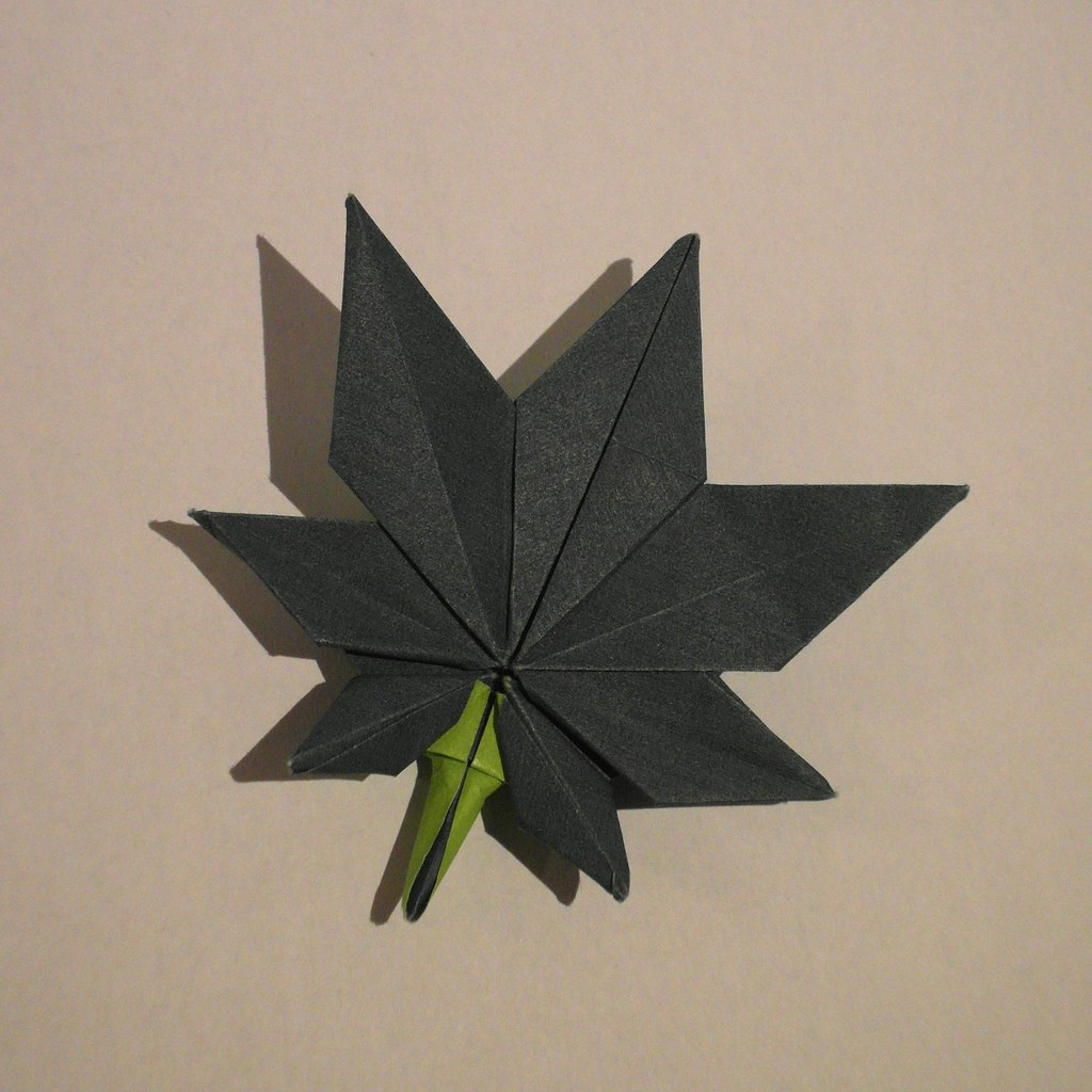 The World's Best Photos of maple and origami - Flickr Hive ... - photo#17