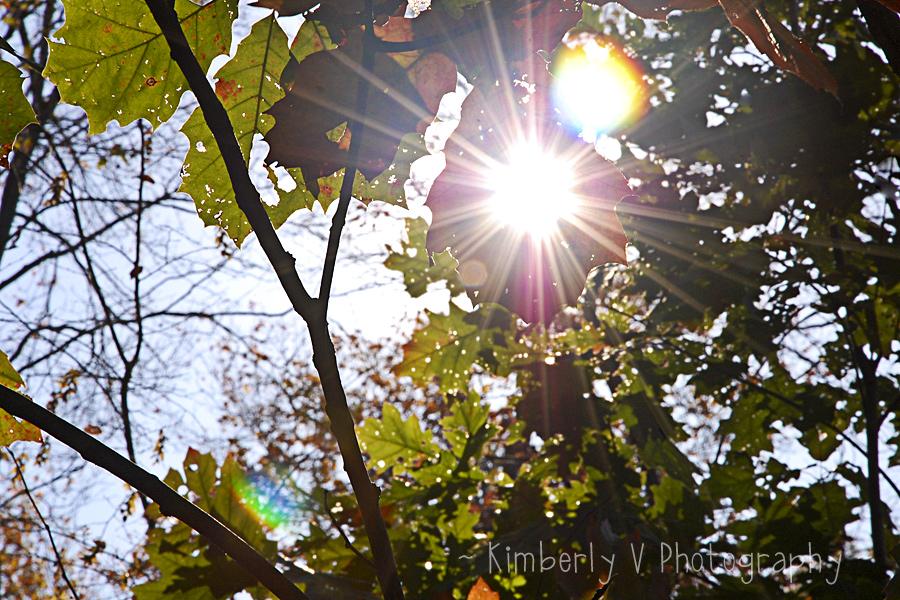 October sunburst