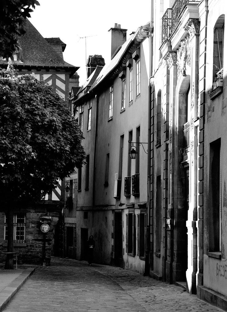 rue-arbre