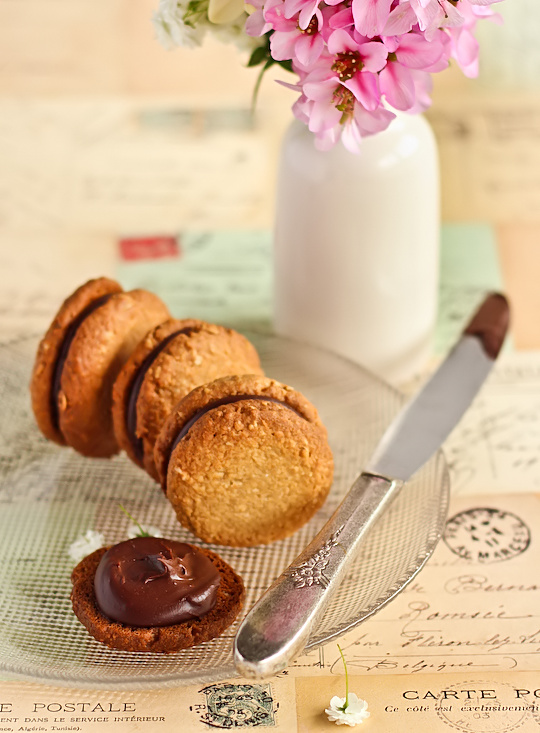 oat_coconut_choc_biscuits-6