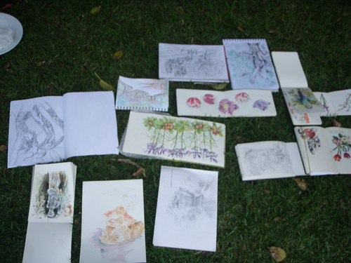 sydney sketchers in the Royal Botanic Garden
