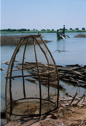 Fishing trap, Africa