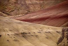 untitled-20110627-0236.jpg (jenn.coyle) Tags: oregon paintedhills