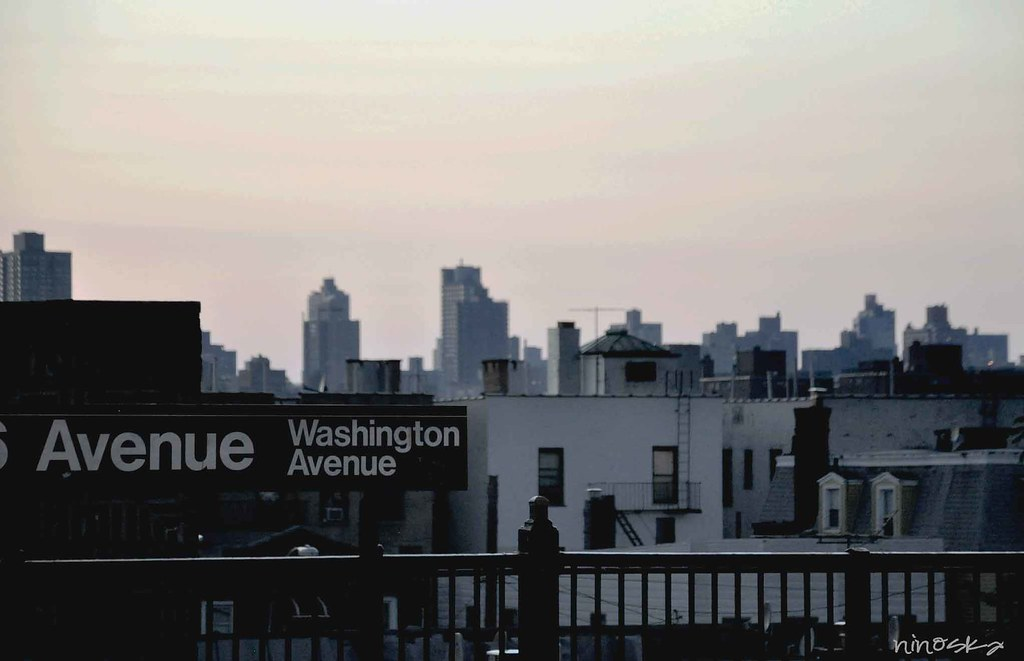 avenue-washington-NY