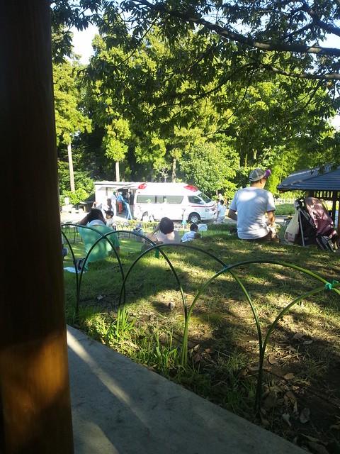 公園に救急車が…の写真