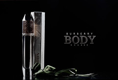 Burberry Body (Abeer Hussein) Tags: