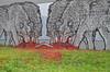 (Laser Burners) Tags: ny newyork graffiti blood stencil albany wolves citynoise livingwalls brokencrow