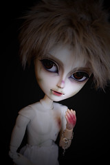 Cold Vancouver (Queen Carcharias  Libuse) Tags: brown black eye strange make up dark fur grey doll acrylic zombie nosferatu wig pullip custo taeyang