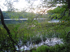 Evening at Berry Pond. (MTBradley) Tags: lake water geotagged ma lago us pond unitedstates pittsfield westernmassachusetts lagunita berrypond berkshirecounty pittsfieldstateforest