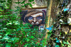 Troll Story 2 (marcovdz) Tags: wall forest painting gnome peinture vegetation troll mur hdr forêt murale 3xp