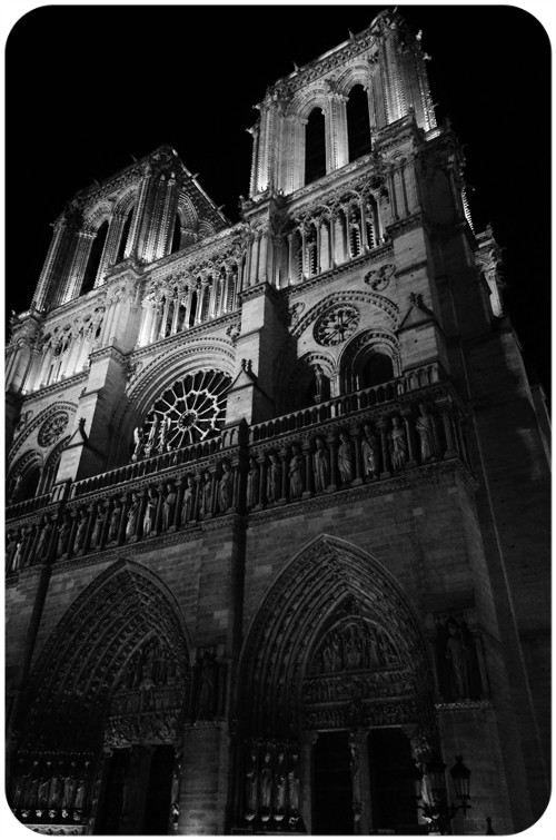 notre dame© by Haalo