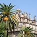 Siviglia: palme e guglie
