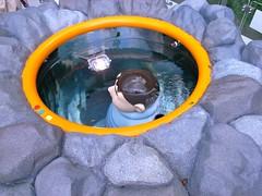 泉の底のキレイなジャイアン