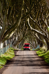 The dark hedges (Ian Humes) Tags: rural northernireland van postman stranocum darkhedges