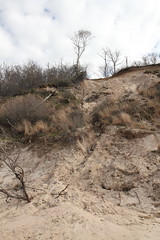 Eroding Coastal Bluff (sandy richard) Tags: usa newyork unitedstates geology wildwood calverton wildwoodstatepark newyorkstateparks longislandbeaches sandyrichard longislandgeology sandrarichard wildwoodstateparkgeology