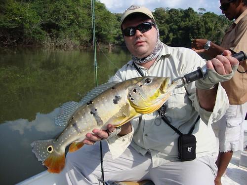 Amazonia201162