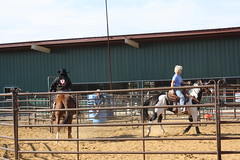 IMG_5562 (tanyerhide) Tags: ranch horses tree home training texas tank forsale realestate cattle farm business land redoak saddle crates reiner steers countryhome tomdavis ranchrodeo cowcamp tracidavis tntweatherford woman~wife~mom~multitasker