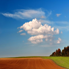 landscape - 0007 (helmet13) Tags: raw landscape dreamlike earth sky cloud silence edgeoftheforest agriculture latesummer rural world100f platinumheartaward aoi bestcapturesaoi d300s studies 200faves gettyimages heartaward simplicity