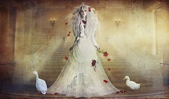 The bloody bride (Desire Delgado) Tags: white lost death bride alma ducks palace muerte soul bloody sangre patos novia perdida