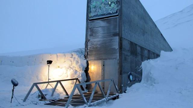 seed Svalbard Global Seed Vault