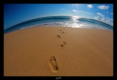 Les Pieds dans le sable, les yeux dans l'eau... :-) ('^_^ D.F.N. Damail ^_^') Tags: voyage mer fish france color art love portugal nature canon word french fun photography photo reflex eyes europe photographie picture sable bleu ciel 7d pied franais francais photographe dfn damail borderfx wwwdamailfr