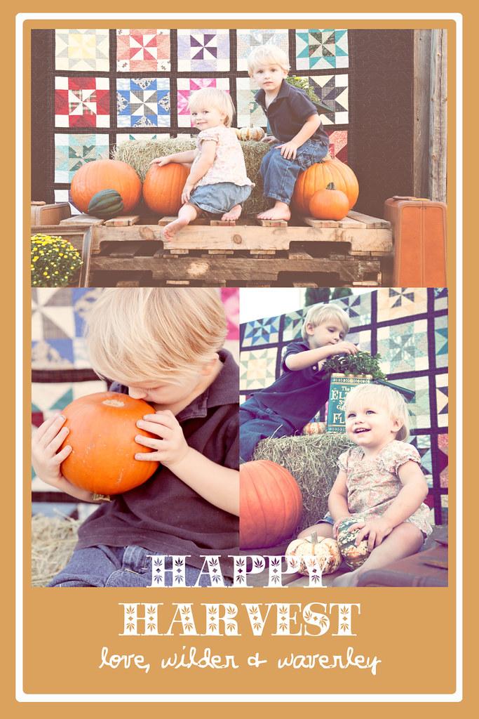 Happy Harvest2